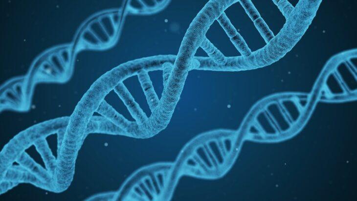 γονίδια διαβήτης 1