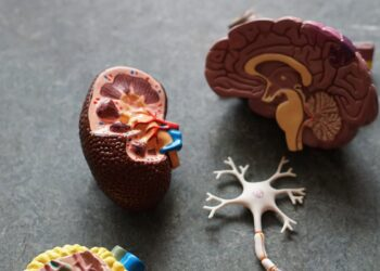 χρόνια νεφρική νόσος