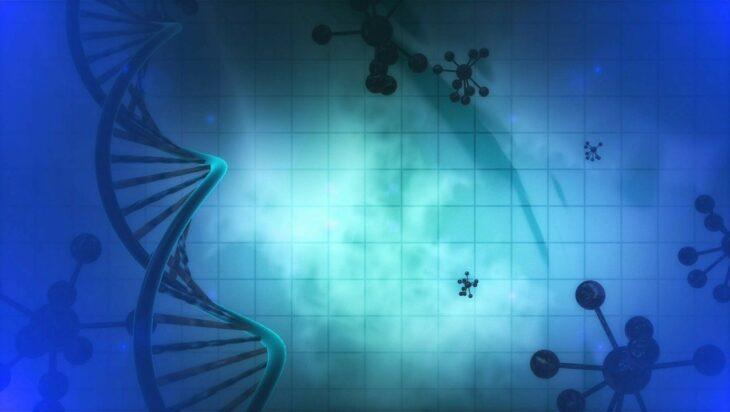 βλαστοκύτταρα έρευνα